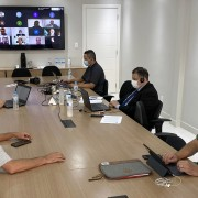 Representantes do Sindicato acompanham audiência virtual